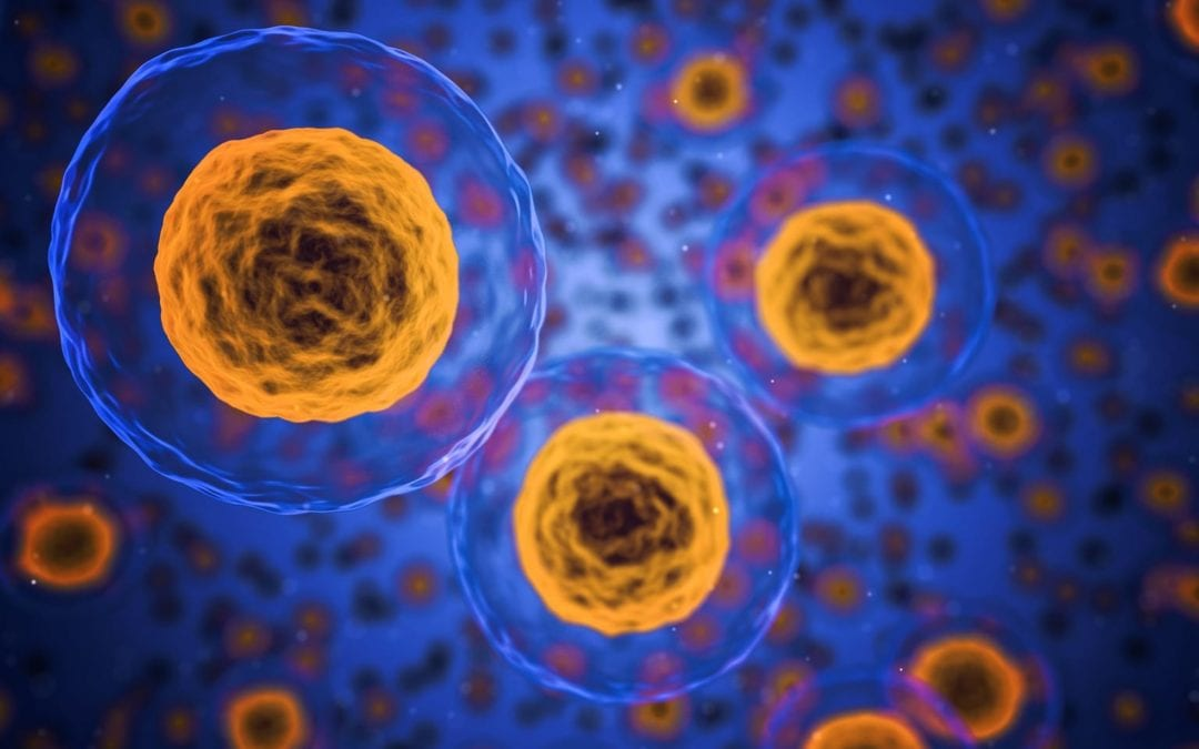 Canada: The regulation of nanoparticles in cosmetics & drugs