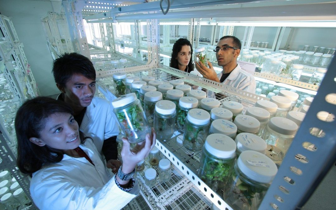 Biotechnology: Production of Natural and Sustainable Ingredients